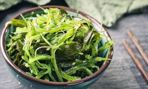 Les algues des super anti-oxydants